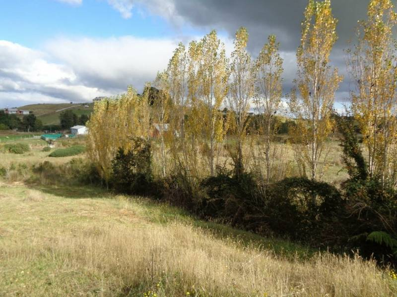 VENTA DE BELLA PARCELA EN SECTOR RURAL DE CHILOÉ.