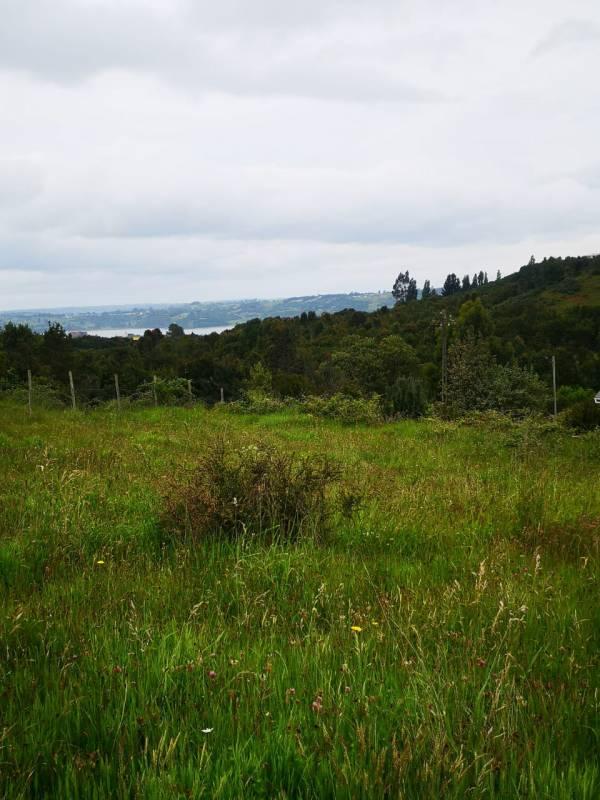 Se vende terreno por apuro en la ciudad de castro