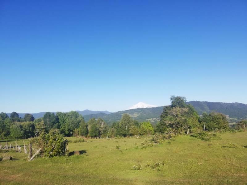 PARCELA 5.000 MTS2, CAMINO VILLARRICA A PANGUIPULLI