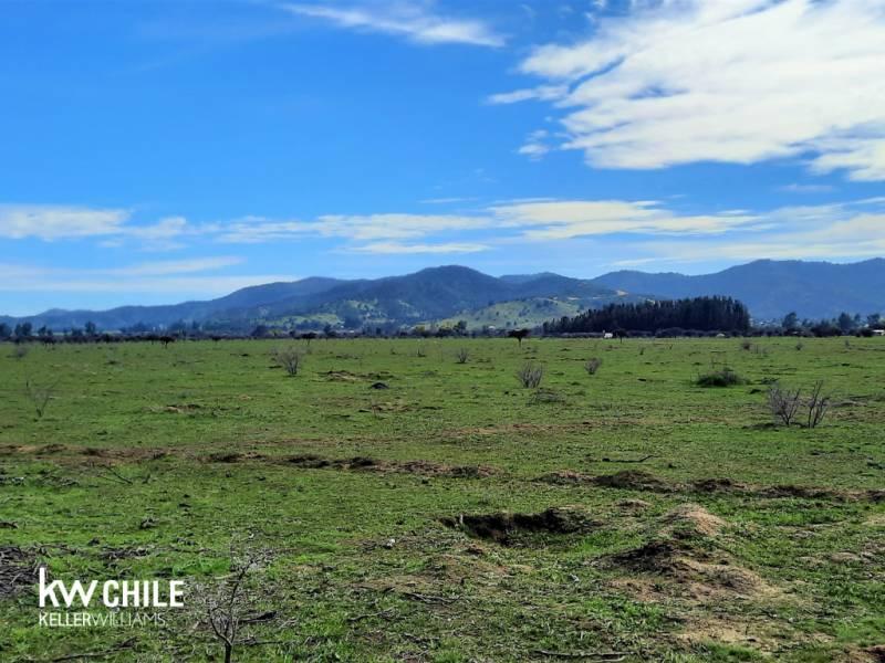 Parcelas Proyecto La Retirada, Pumanque, VI Región