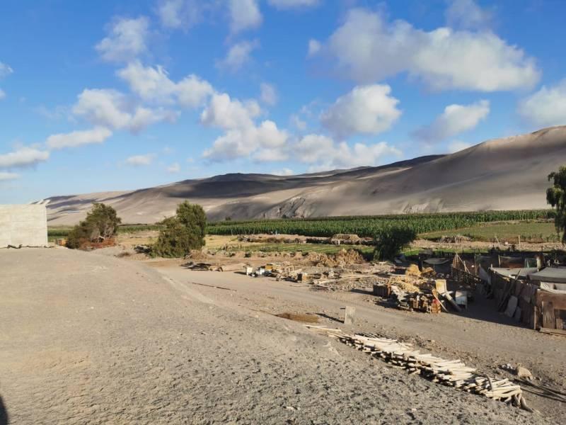 Parcela 6000m2 en Valle LLuta, km 2,5, cerca ciudad