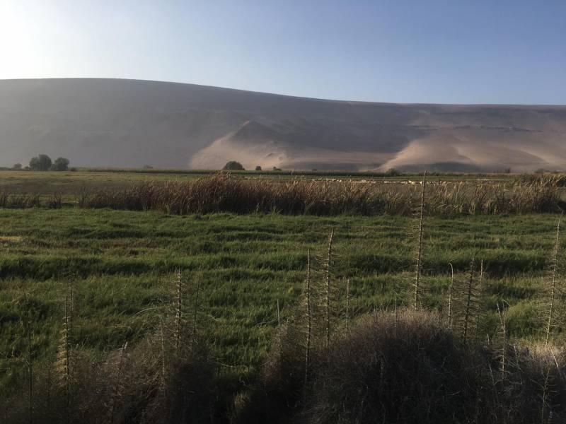 Venta de Parcelas en Valle de Lluta, km 12,5