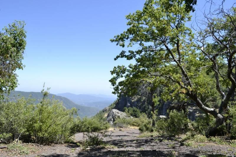 Parcelas de agrado 5000 mts2, Molina , Región del Maule