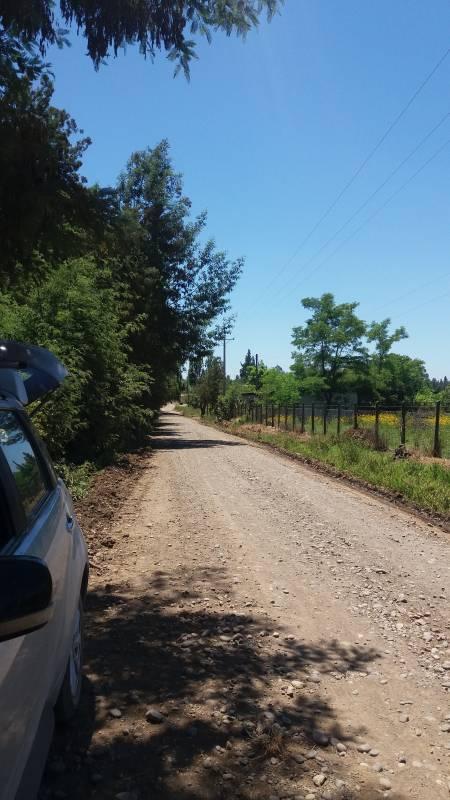 HERMOSO CAMPO 27,5 HÁ, SAN CLEMENTE - TALCA