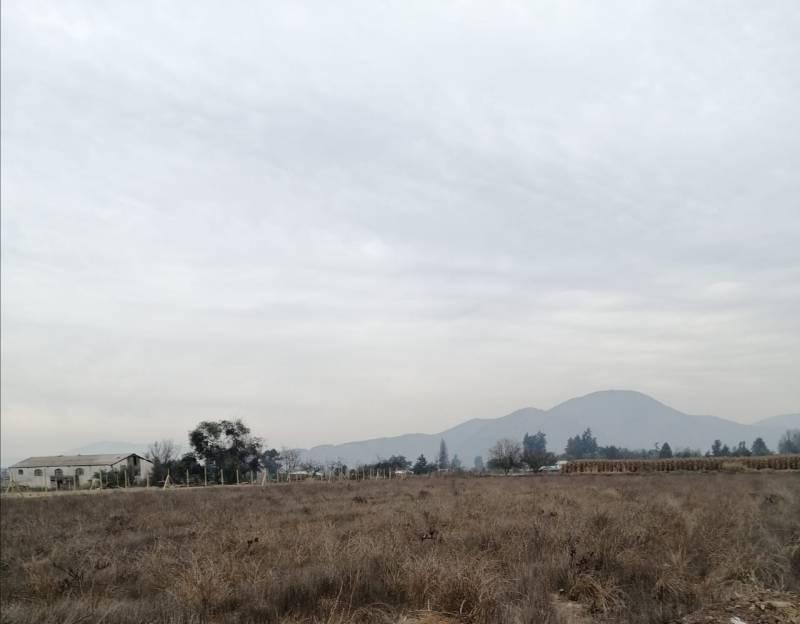 PARCELA 5000M2 CAMINO A SAN GUILLERMO -  TALAGANTE