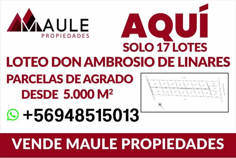 Parcelas de 5000 metros Loteo don Ambrosio de Linares