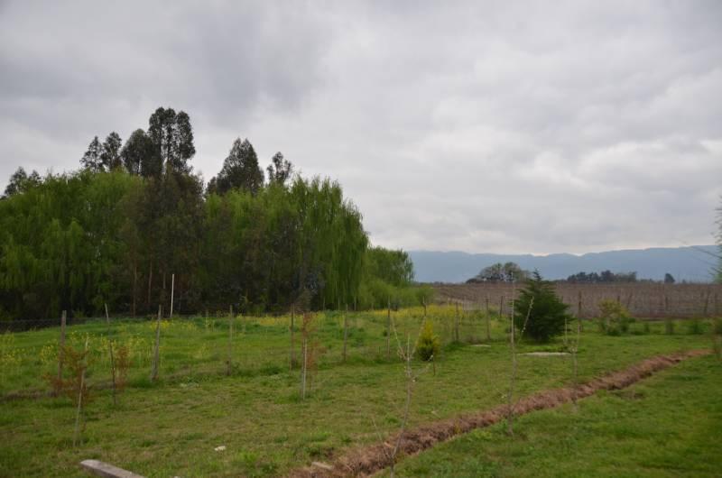 PARCELA DE AGRADO CON ACOGEDORA CASA EN SAGRADA FAMILIA