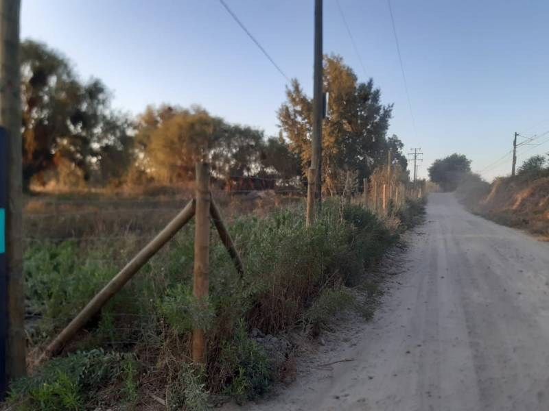 PARCELA DE AGRADO EN TRES MONTES MAULE