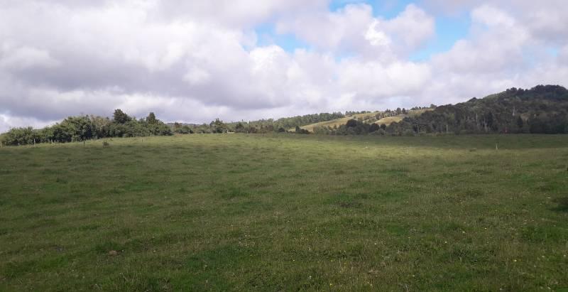 Excelentes parcelas planas con pradera y bosque