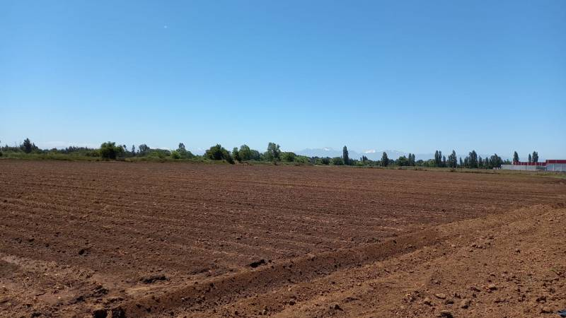 Vendo amplio terreno urbano sector Porvenir, Talca (4712005)