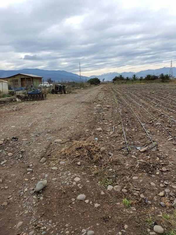 (509 V) QUILLOTA, SAN PEDRO, TERRENO