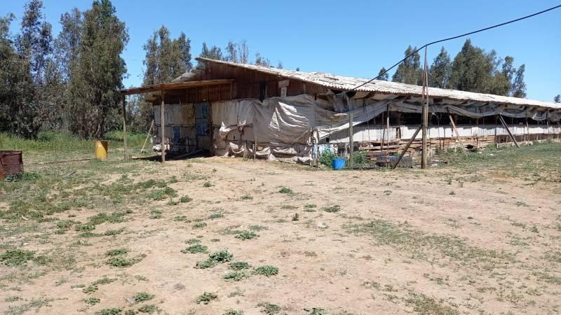(2000) Vendo parcelas en Talca , sector Porvenir