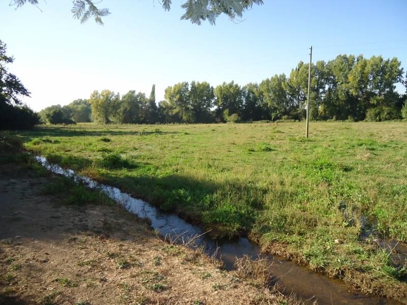 Parcela 4 hectáreas, en entorno campestre privilegiado