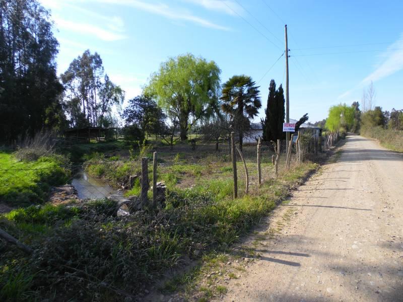 4 hectáreas a 4 km de Ruta principal L-11. Linares - Colbún.