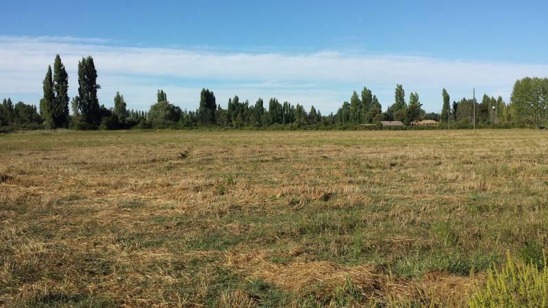 Atractiva parcela de 2,72 hectáreas