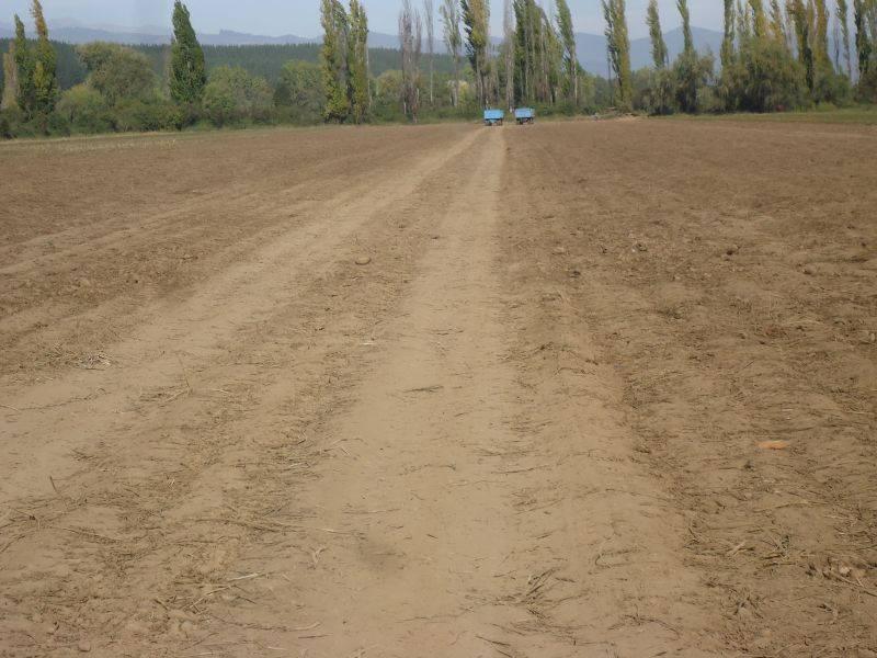 Hermoso campo de 26 hectáreas