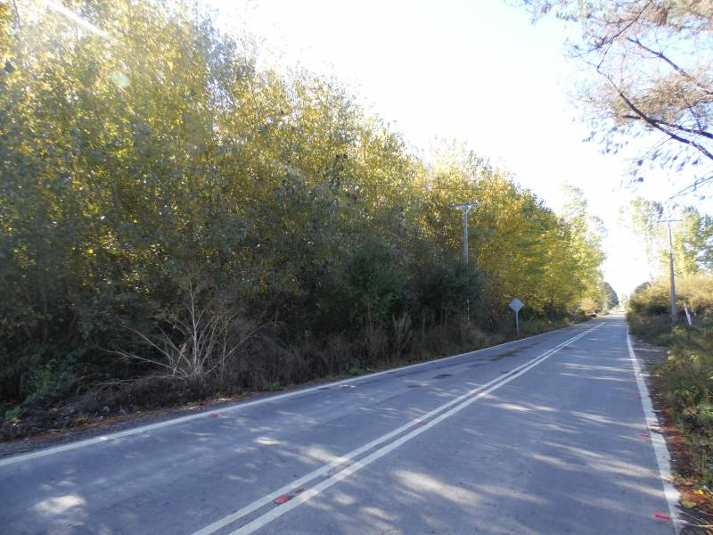 Atractiva propiedad rural a metros de Ruta 5 Sur; Las Motas.