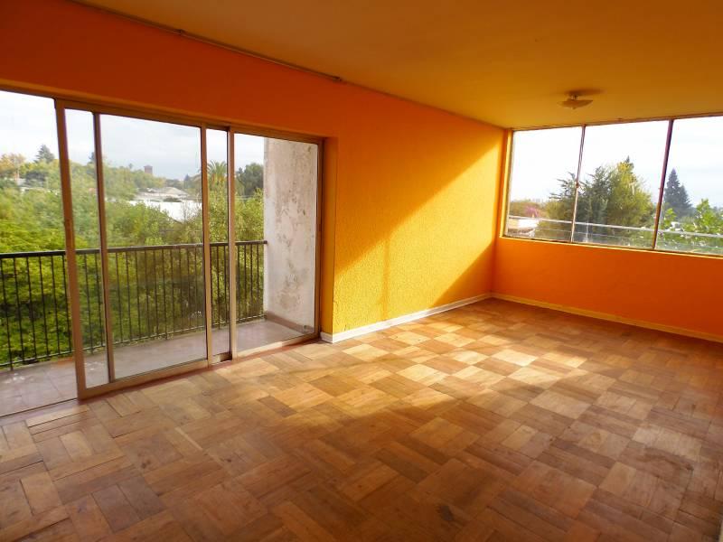 Amplio departamento, luminoso, en central ubicación, Linares