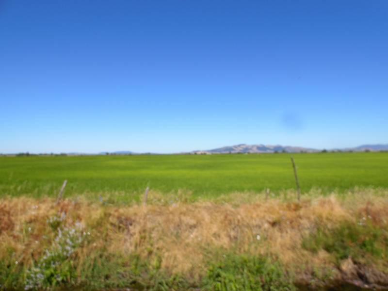 Campo cultivable, plano, rectangular con derechos de agua