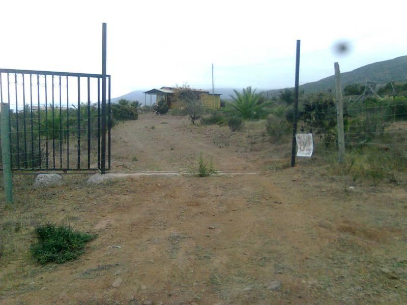 PARCELA 10.000 M2 SECTOR ALCAPARRAS  - TAMBILLO COQUIMBO