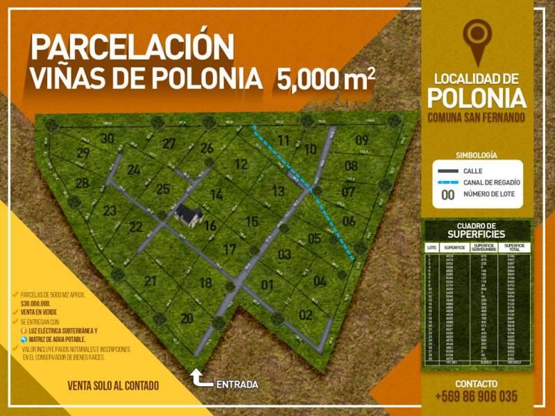 VENTA DE LOTEO VIÑAS POLONIA 5000MTS2
