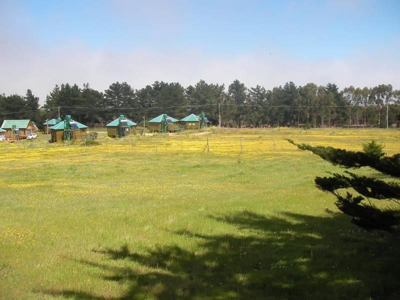 PUNTA DE LOBOS- EXCELENTE UBICACIÓN- 750M2