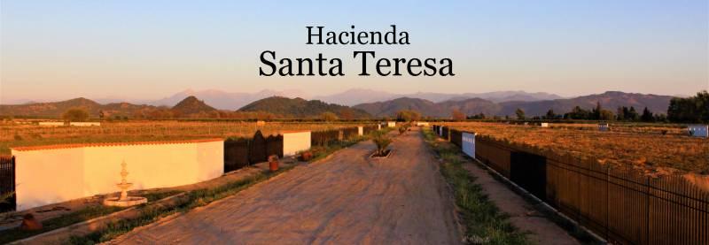 PARCELA DE 5.000M2 EN BARRIO EXCLUSIVO HACIENDA SANTA TERESA