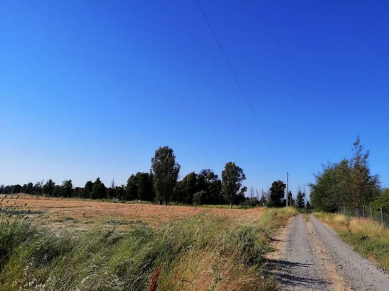 Parcela Camino a San Camilo km 2 Los Cipres 2