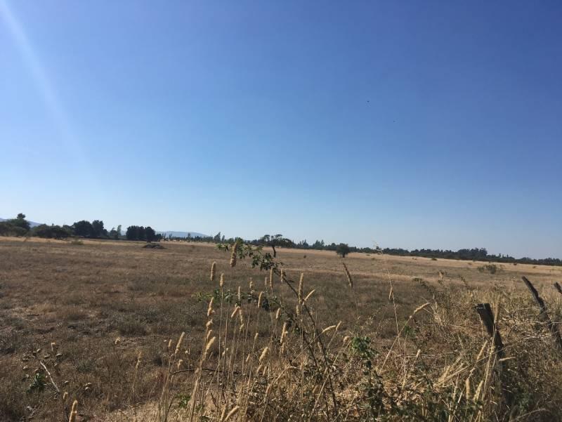 Campo Ubicado a 12 km de San Carlos