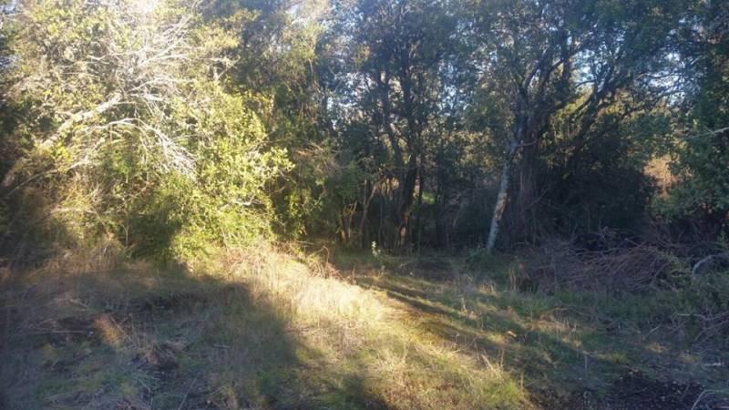 Parcela de agrado sector Cerro Colorado - Jofre & Rossi -