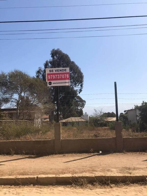Vendo terreno de 1000 m2.  Av. Mirasol en Algarrobo.