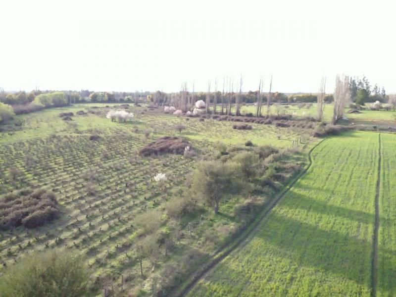 TERRENO AGRICOLA PARA LOTEAR EN 3 MARIAS BULNES
