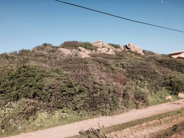 Trío de Parcelas en Pichidangui