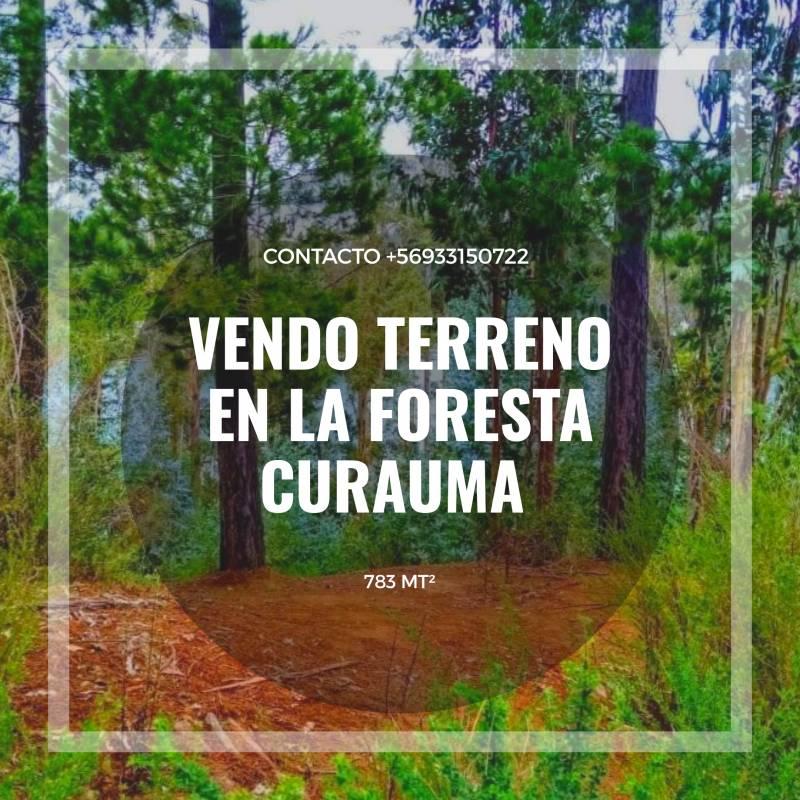 TERRENO EN CURAUMA, SECTOR LA FORESTA
