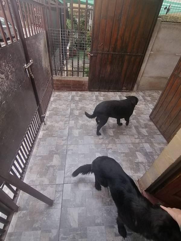 SE VENDE CASA EN PUENTE ALTO VILLA LOS OLIVOS