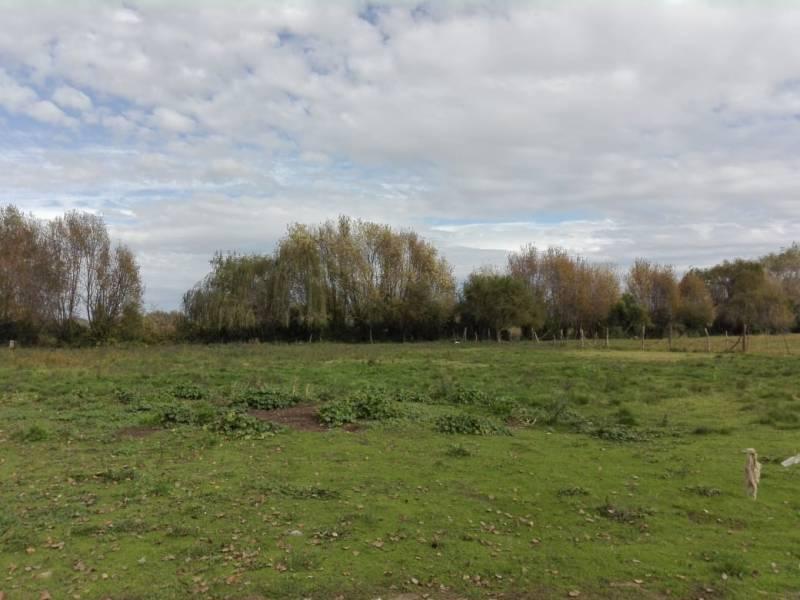 Parcelas de 5 hectareas en Paso Rari(Linares)