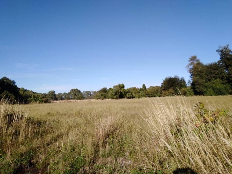 26 hectareas de Terreno camino a Villarrica