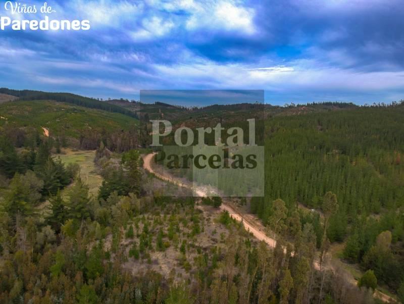 VENDO PARCELAS EN PAREDONES A 7 MIN DEL CENTRO SEXTA REGION