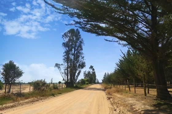 LITUECHE | VENTA DE PARCELAS DE AGRADO EN SEXTA REGIÓN VI