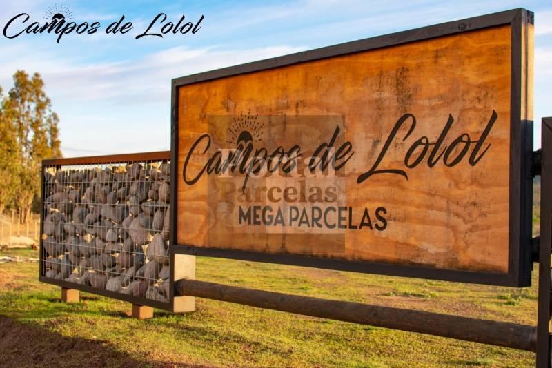 CAMPOS DE LOLOL | VENTA DE PARCELAS A 30 MIN DE BUCALEMU VI