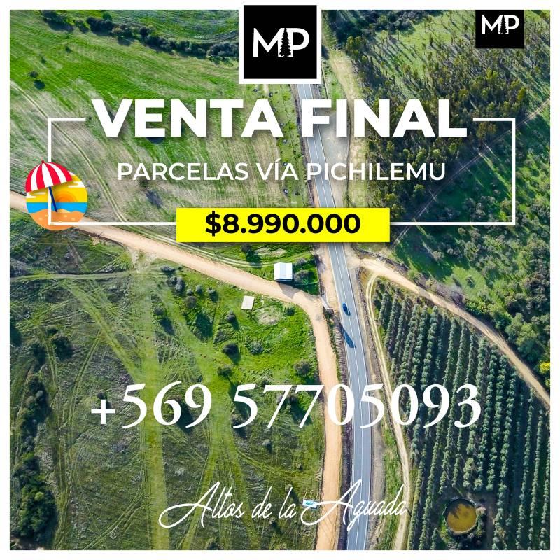 VENTA DE PARCELAS BARATAS CAMINO A PICHILEMU VI REGIÓN CHILE