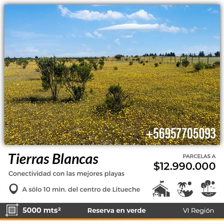 TIERRAS BLANCAS | VENTA DE PARCELAS EN LITUECHE VI REGIÓN