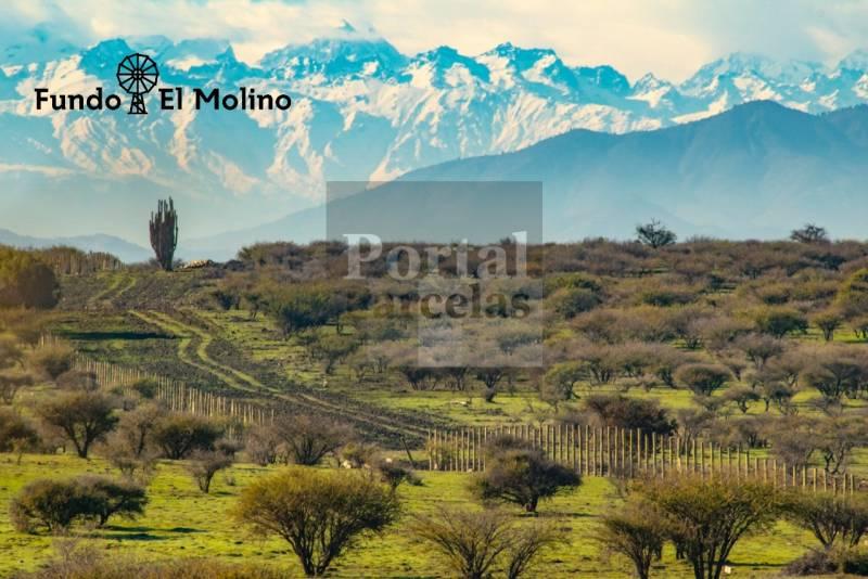 FUNDÓ EL MOLINO | VENTA DE PARCELAS CERCA DE PICHILEMU
