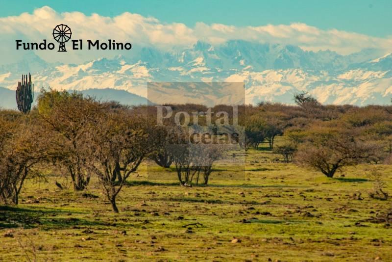FUNDÓ EL MOLINO | VENTA DE PARCELAS EN SEXTA REGIÓN DE CHILE
