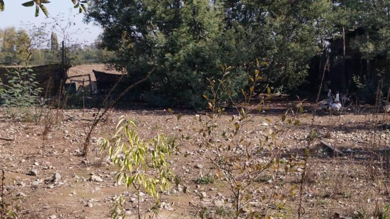 Sitio semi rural de 945 metros cuadrados en linares