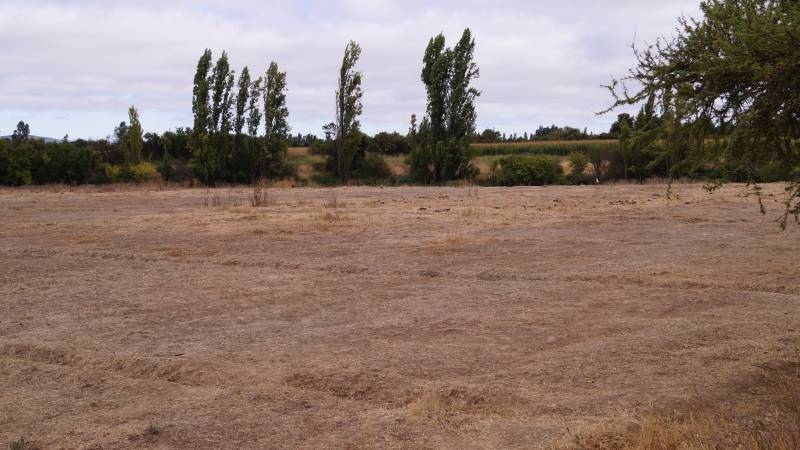 Terreno agrícola de 4 Hectáreas con riego, en Linares