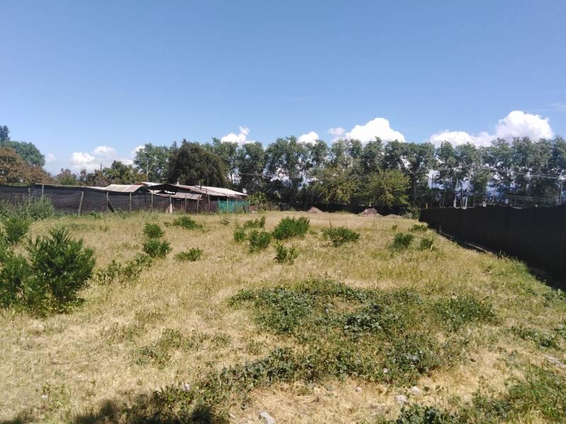 Terreno agrícola  en Arriendo