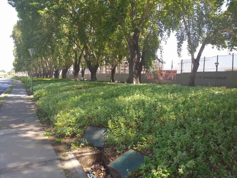 Arriendo Casa Parque Cousiño Macul- metro Quilín