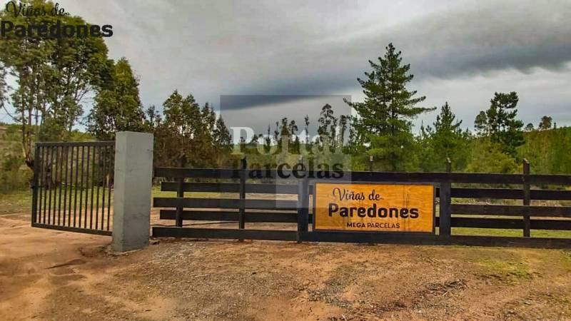 VIÑAS DE PAREDONES | VENTA DE PARCELAS A 15 MIN DE BUCALEMU