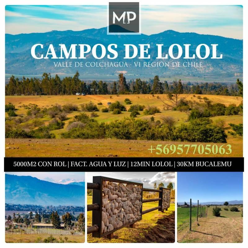 Lolol | Venta de Parcelas en Sexta Región de Chile Colchagua